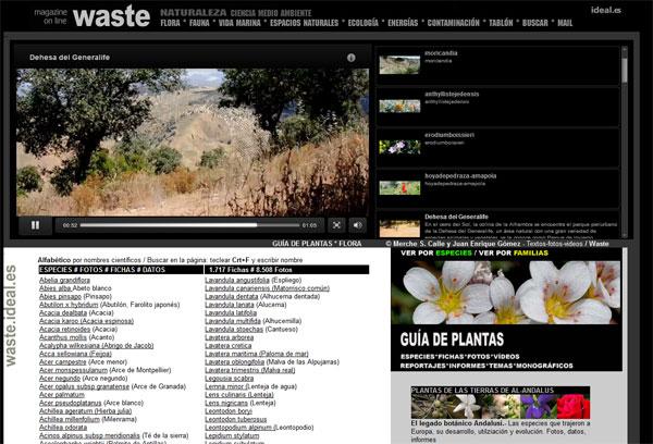 waste.ideal.es